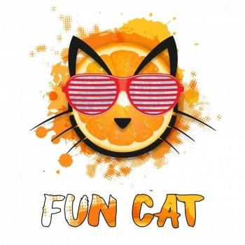 Copy Cat Fun Cat